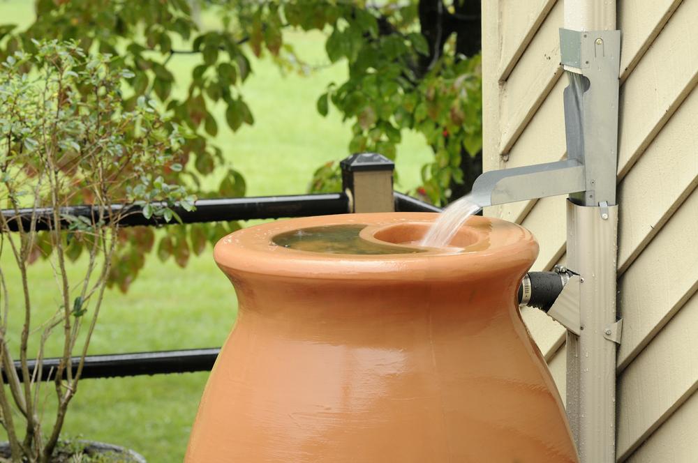 Rain barrels for managing rain where it falls