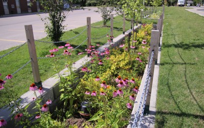 Roads and runoff—using green infrastructure to manage stormwater from roads